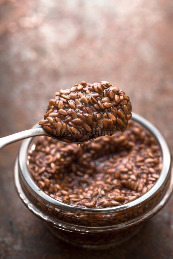 Κουτάλι με την ακατέργαστη πρησμένη κατακόρυφο σπόρων λιναριού στοκ εικόνα με δικαίωμα ελεύθερης χρήσης