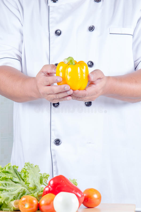 Κουδούνι εκμετάλλευσης αρχιμαγείρων peper στοκ εικόνα