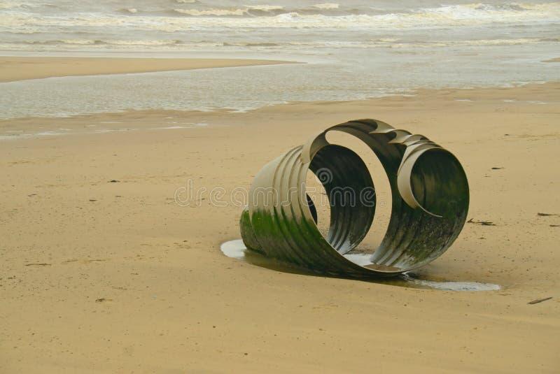 Κοχύλι της Mary ` s στην παραλία Cleveley ` s στοκ εικόνες