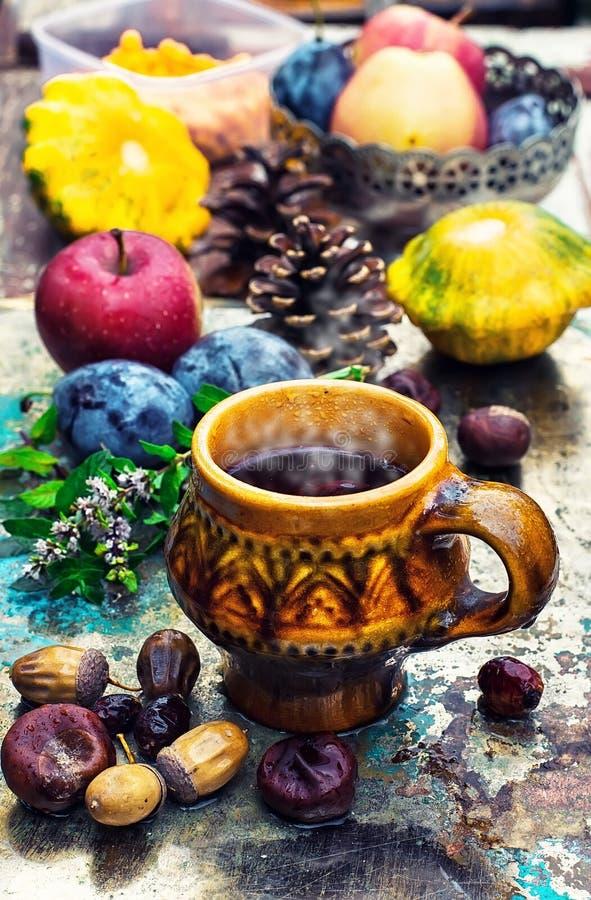 Κούπα με το βοτανικό τσάι στοκ φωτογραφία