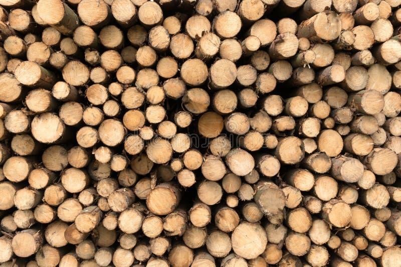 κούτσουρα ξύλινα στοκ εικόνα με δικαίωμα ελεύθερης χρήσης