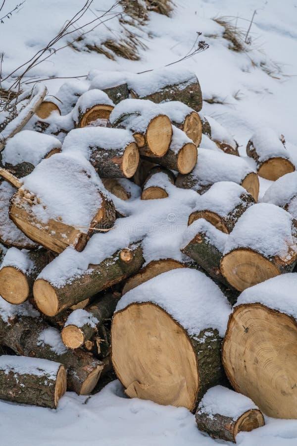 Κούτσουρα που καλύπτονται ξύλινα στο χιόνι στοκ εικόνα με δικαίωμα ελεύθερης χρήσης