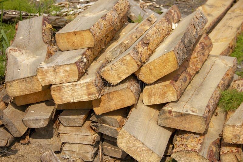 Κούτσουρα σε ένα πριονιστήριο πριονισμένα κωνοφόρα δέντρα που συσσωρεύονται σε έναν σωρό poaching Κούτσουρα για την οικοδόμηση εν στοκ φωτογραφία με δικαίωμα ελεύθερης χρήσης