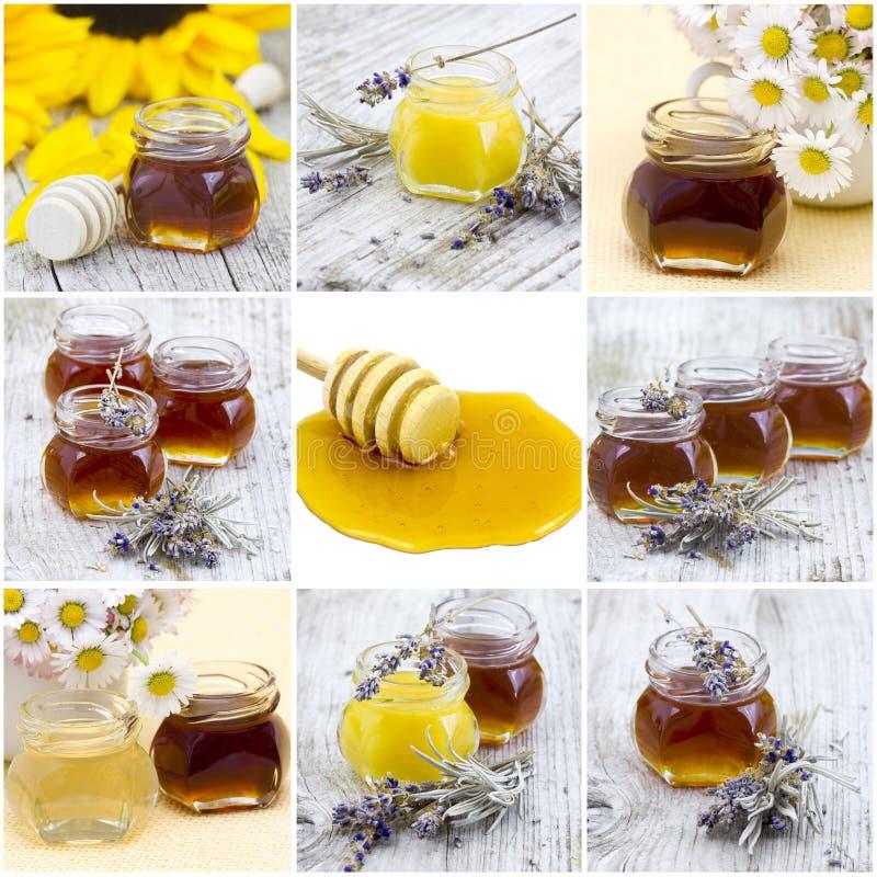 Κολάζ με το μέλι στοκ εικόνες