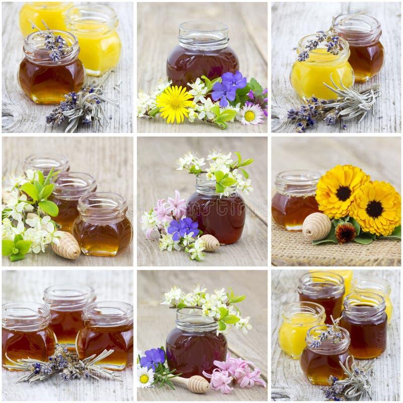 Κολάζ με το μέλι στοκ φωτογραφία