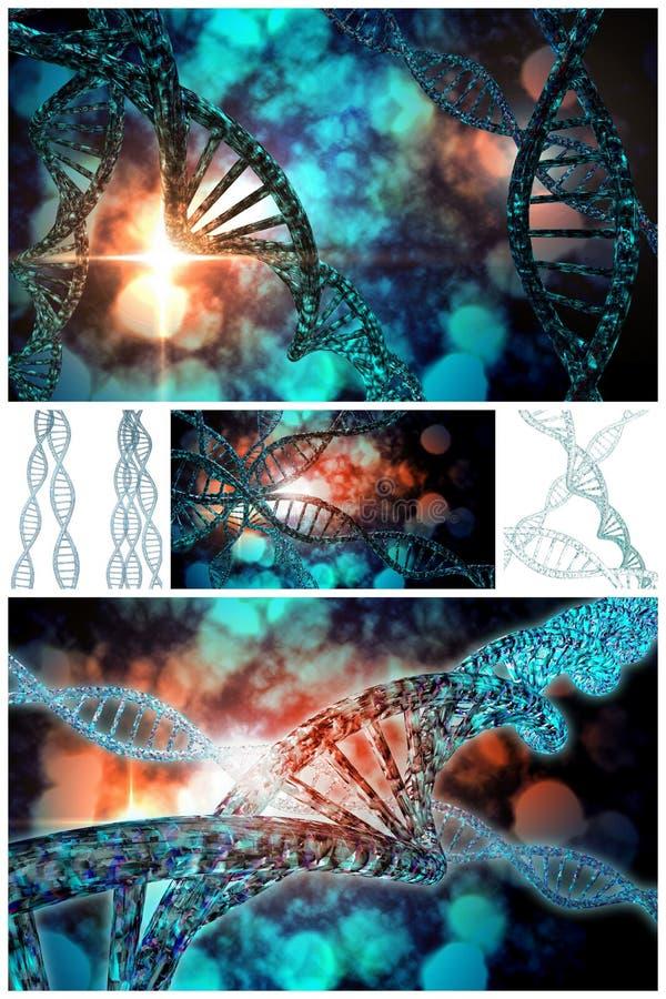 Κολάζ σκελών DNA διανυσματική απεικόνιση