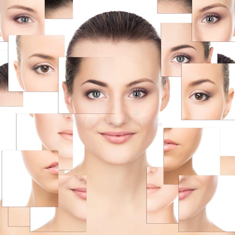 Κολάζ των πορτρέτων των νέων γυναικών στο φως makeup στοκ εικόνες