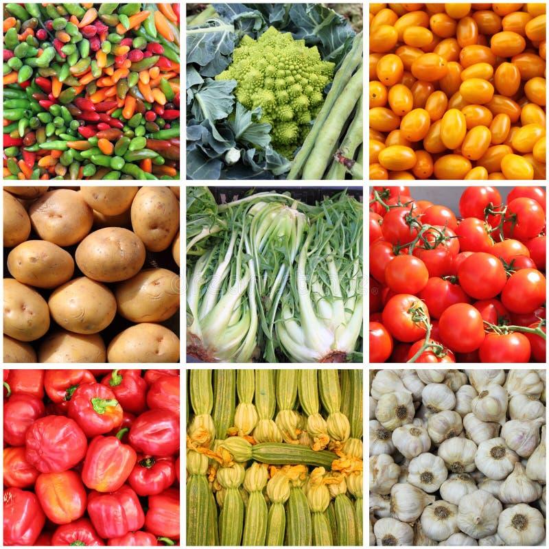 Κολάζ φρέσκων λαχανικών στοκ φωτογραφίες με δικαίωμα ελεύθερης χρήσης
