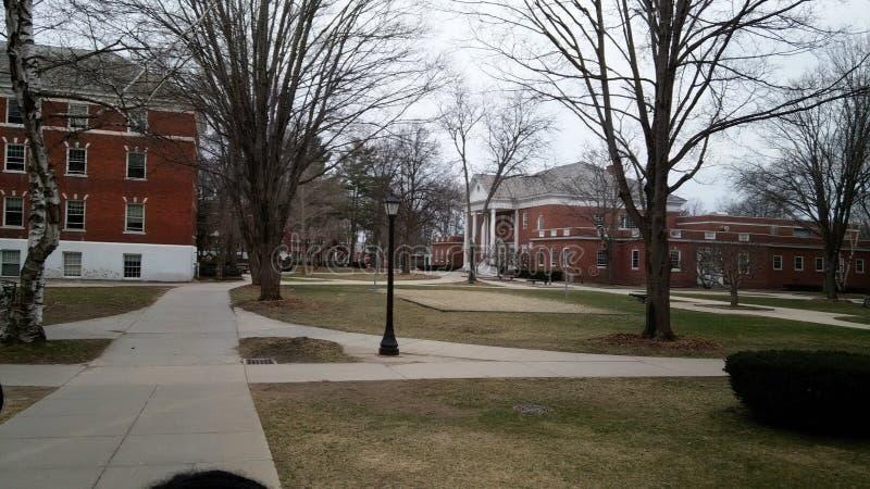 Κολλέγιο το χειμώνα στοκ εικόνα