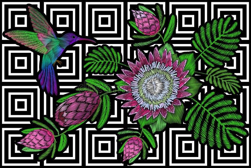 Κολίβριο γύρω από το εξωτικό τροπικό θερινό άνθος protea λουλουδιών Ο υφαντικός Μαύρος τυπωμένων υλών διακοσμήσεων μπαλωμάτων μόδ ελεύθερη απεικόνιση δικαιώματος