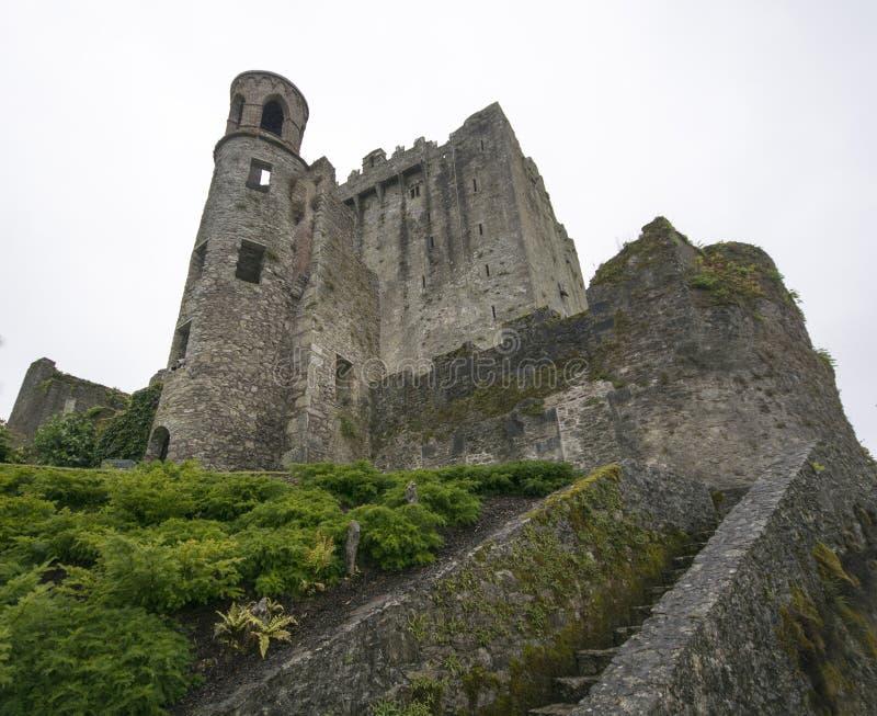 Κολακεία Castle, κομητεία Κορκ Ιρλανδία κολακείας στοκ εικόνα με δικαίωμα ελεύθερης χρήσης