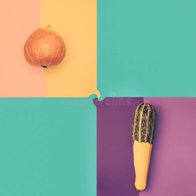 Κολοκύθα και κολοκύθια φωτογραφιών στα χρωματισμένα υπόβαθρα στοκ φωτογραφία