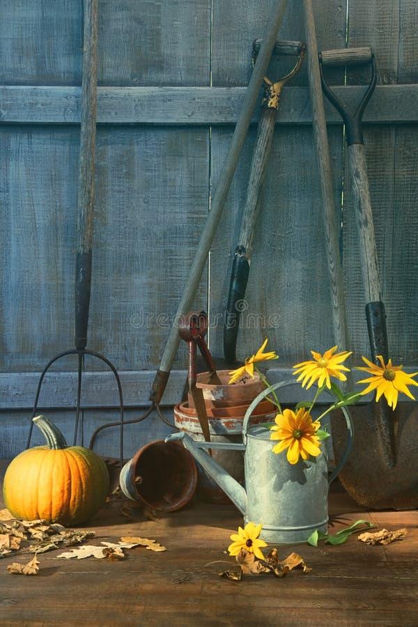 Κολοκύθα και λουλούδια με τα εργαλεία στοκ εικόνα