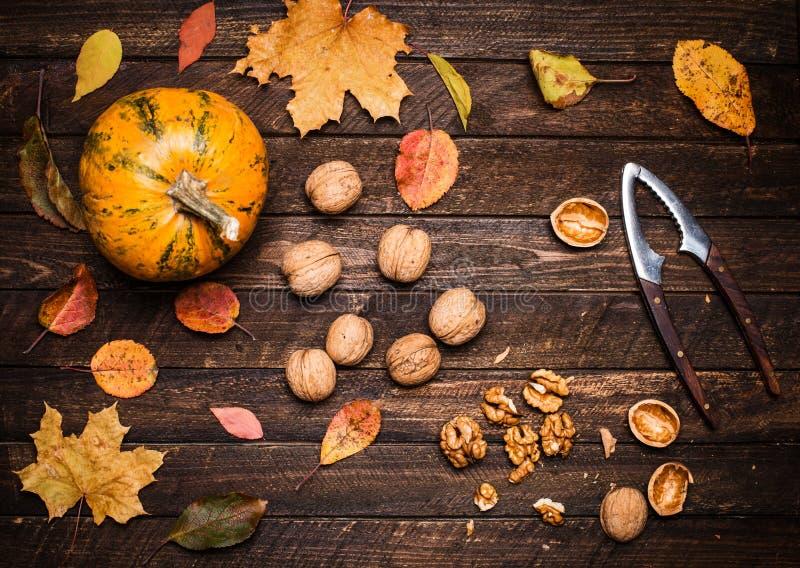 Κολοκύθα φθινοπώρου, πυρήνες ξύλων καρυδιάς, ολόκληροι ξύλα καρυδιάς και καρυοθραύστης επάνω στοκ εικόνες με δικαίωμα ελεύθερης χρήσης