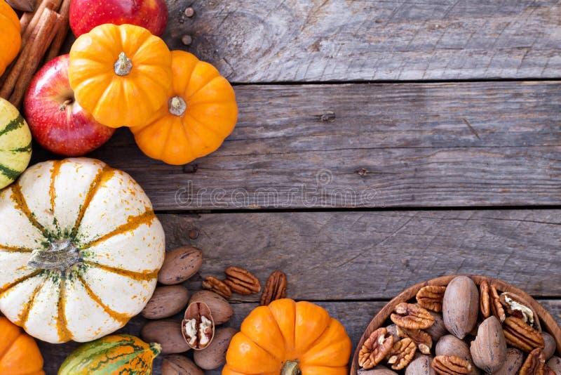 Κολοκύθες, καρύδια, ινδικό καλαμπόκι και μήλα στοκ εικόνες με δικαίωμα ελεύθερης χρήσης