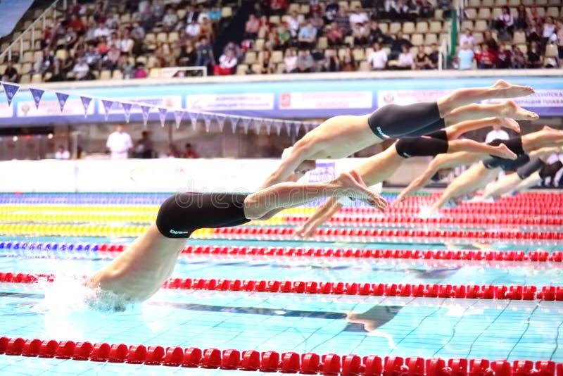 Κολυμβητές ομάδας που πηδούν στο νερό στοκ εικόνες