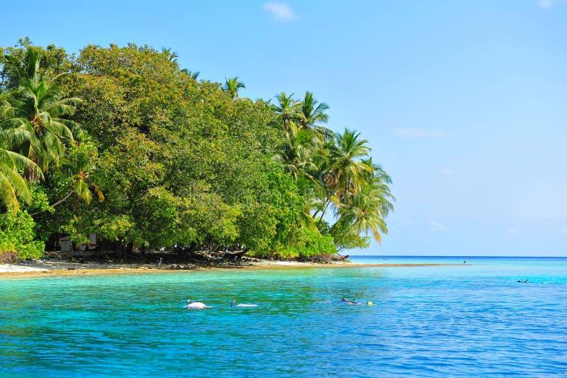 Κολυμβητές που κολυμπούν με αναπνευτήρα στην παραλία δίπλα σε ένα Maldivian νησί στοκ φωτογραφίες