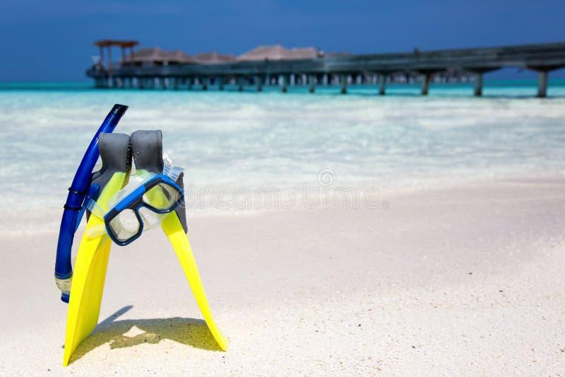 Κολυμπώντας με αναπνευτήρα εργαλείο σε μια Maldivian παραλία στοκ εικόνα με δικαίωμα ελεύθερης χρήσης
