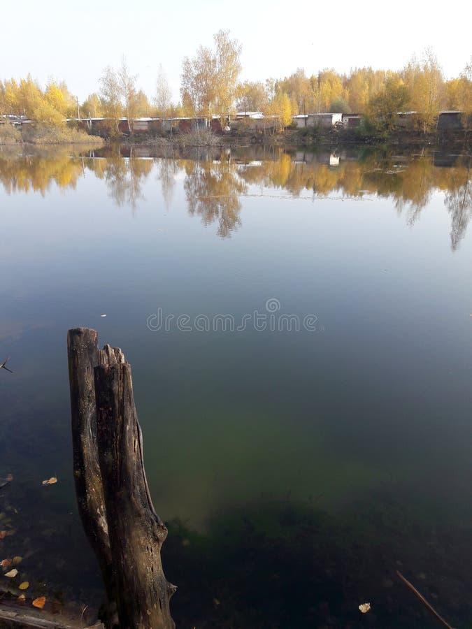 Κολόβωμα από τη λίμνη στοκ φωτογραφία