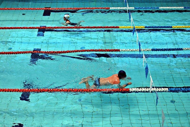 Κολύμβηση στην πισίνα στοκ εικόνα με δικαίωμα ελεύθερης χρήσης