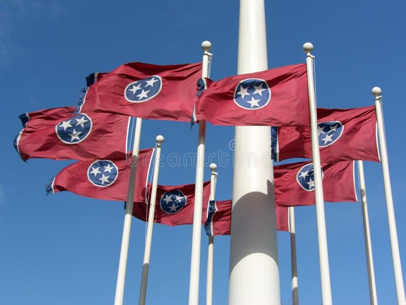 κράτος σημαίας Tennessee στοκ φωτογραφία με δικαίωμα ελεύθερης χρήσης