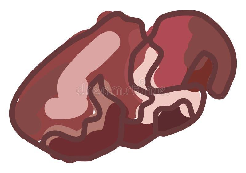Κρέας αγκίστρων, απεικόνιση, διάνυσμα απεικόνιση αποθεμάτων