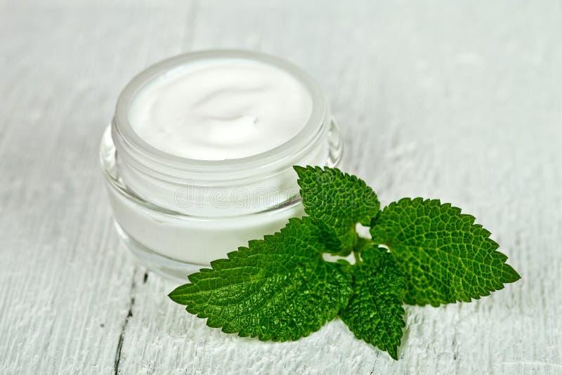 Κρέμα προσώπου στο βάζο γυαλιού με το πράσινο φύλλο του urtica στοκ εικόνα με δικαίωμα ελεύθερης χρήσης