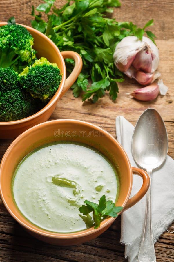 Κρέμα της σούπας μπρόκολου με το μαϊντανό στοκ φωτογραφία