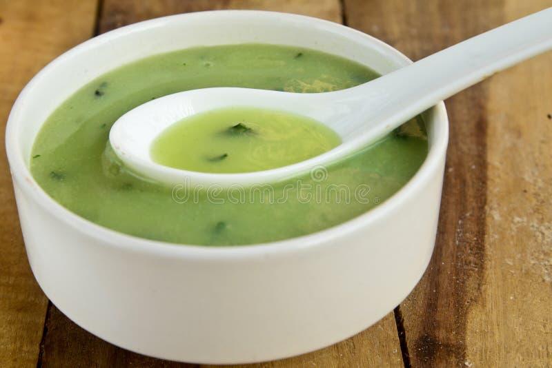 Κρέμα της σούπας σπανακιού στοκ εικόνα