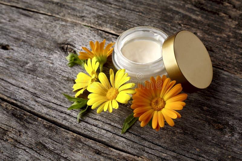 Κρέμα Calendula με το λουλούδι στο ξύλινο υπόβαθρο στοκ εικόνες με δικαίωμα ελεύθερης χρήσης