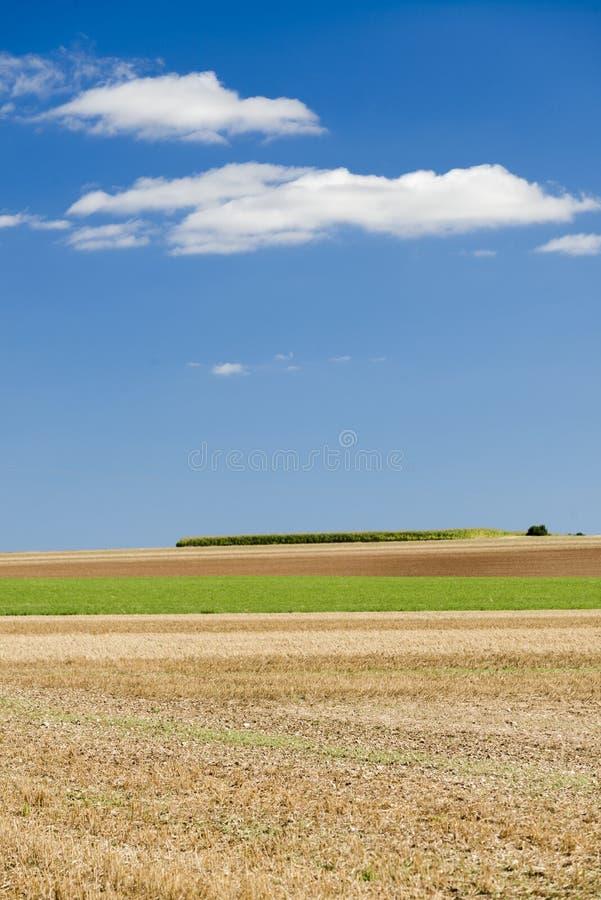 Κρήτη Senesi στοκ εικόνα με δικαίωμα ελεύθερης χρήσης