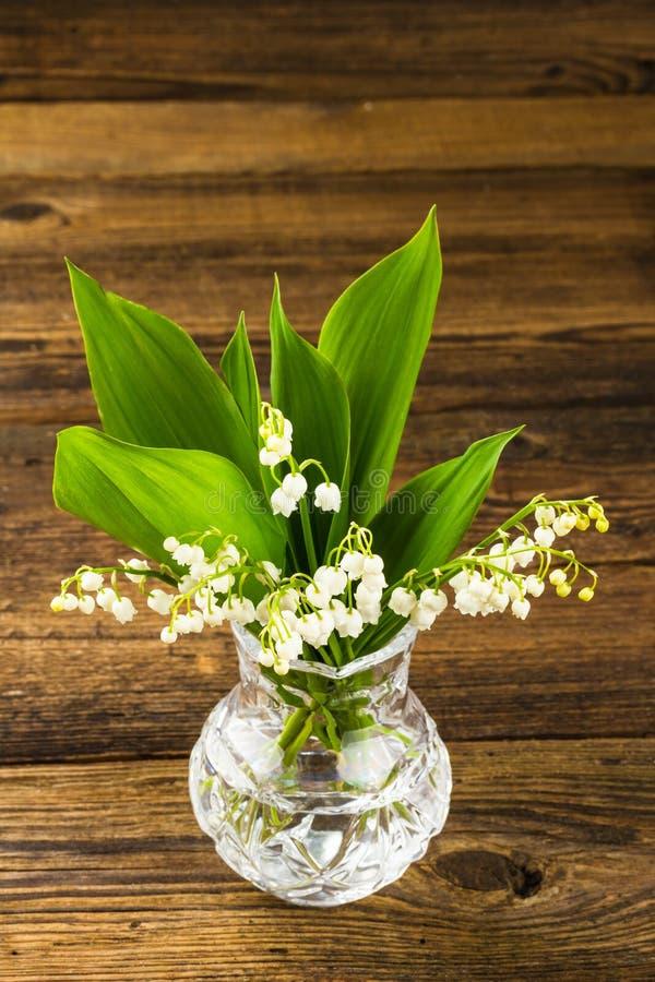 Κρίνοι της κοιλάδας flowerpot στοκ φωτογραφία