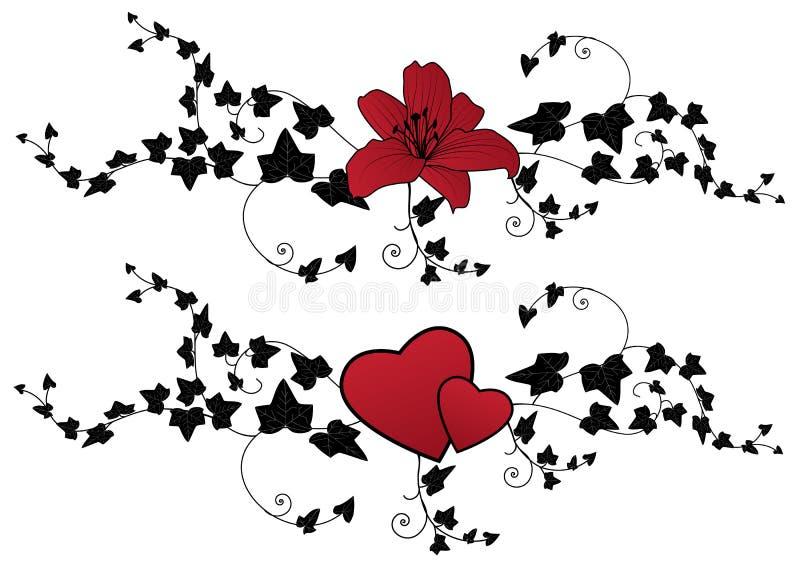 κρίνος κισσών καρδιών απεικόνιση αποθεμάτων