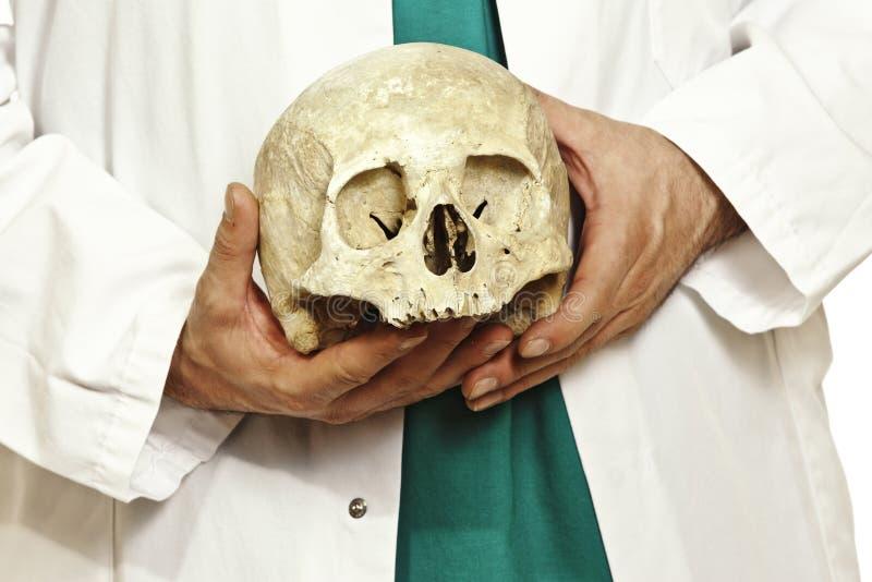 κρανίο γιατρών στοκ φωτογραφία με δικαίωμα ελεύθερης χρήσης