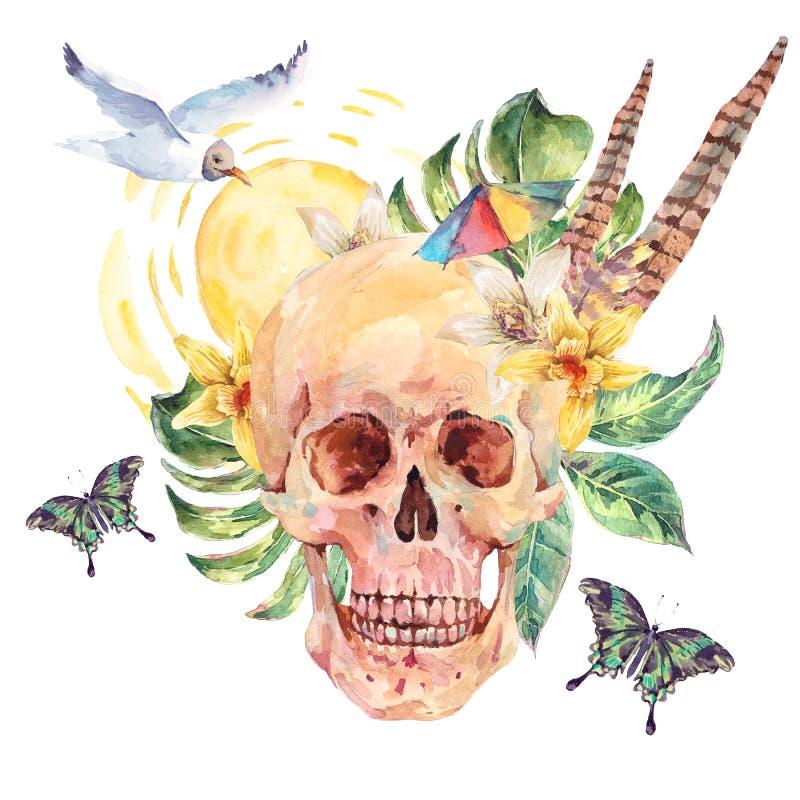 Κρανίο Watercolor, γλάρος, τροπικά φύλλα, λουλούδια, butterflie ελεύθερη απεικόνιση δικαιώματος