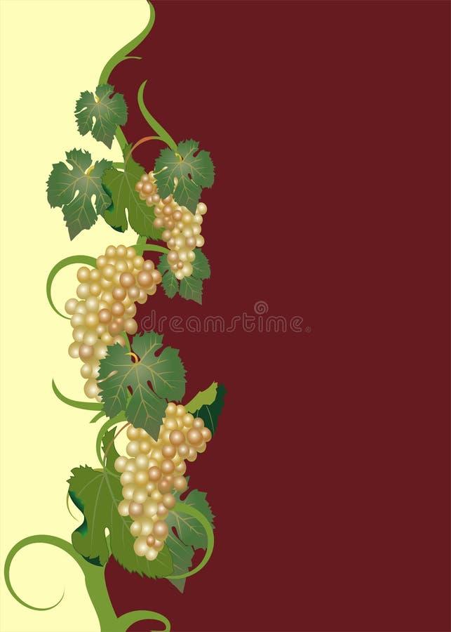 κρασί ετικετών ελεύθερη απεικόνιση δικαιώματος