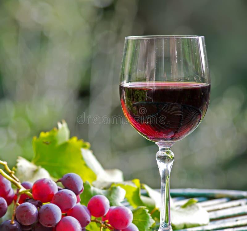 Κρασί και σταφύλια στοκ φωτογραφίες με δικαίωμα ελεύθερης χρήσης
