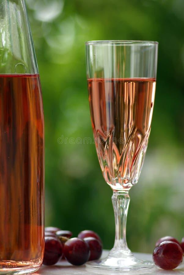κρασί του Αλεντέιο ros στοκ εικόνες