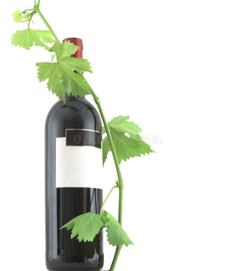 κρασί φύλλων μπουκαλιών στοκ εικόνα