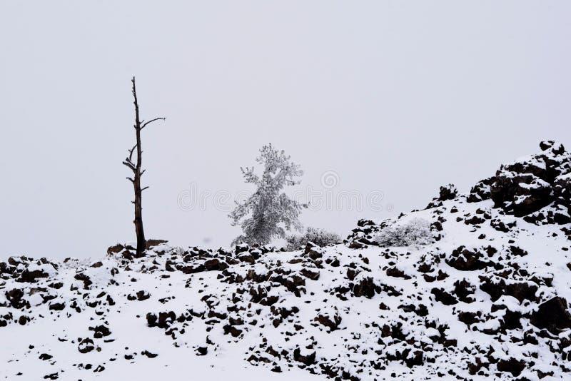 Κρατήρες του φεγγαριού το χειμώνα στοκ φωτογραφίες με δικαίωμα ελεύθερης χρήσης
