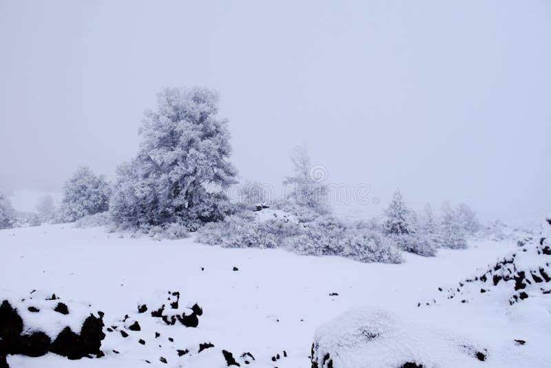 Κρατήρες του φεγγαριού το χειμώνα στοκ εικόνα