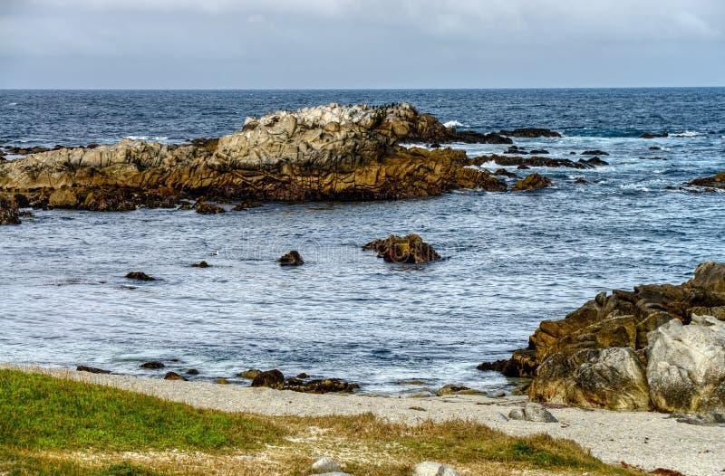 Κρατική θαλάσσια επιφύλαξη Asilomar στοκ φωτογραφία με δικαίωμα ελεύθερης χρήσης