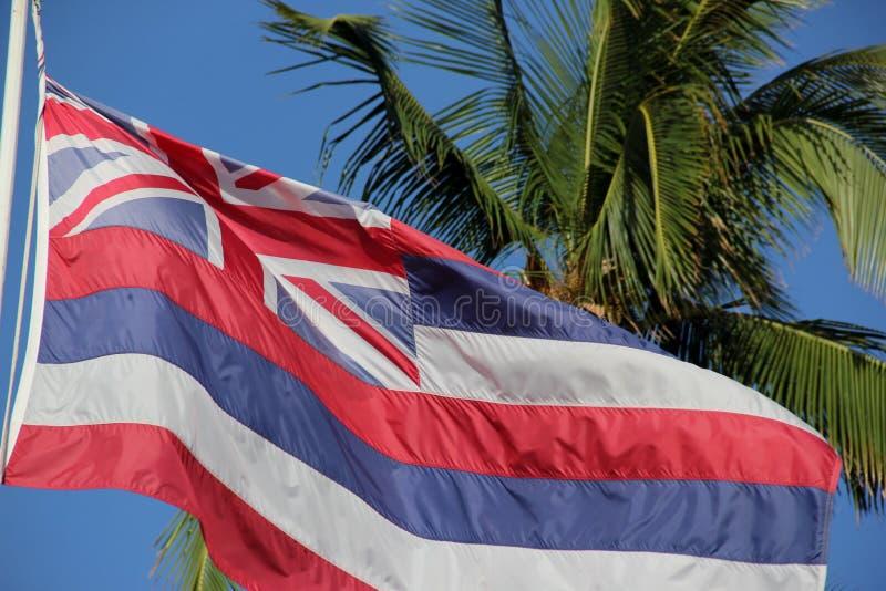 Κρατική σημαία της Χαβάης στοκ εικόνες με δικαίωμα ελεύθερης χρήσης