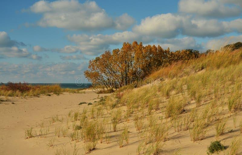 Κρατικό πάρκο αμμόλοφων του Warren στη λίμνη Μίτσιγκαν στοκ φωτογραφίες