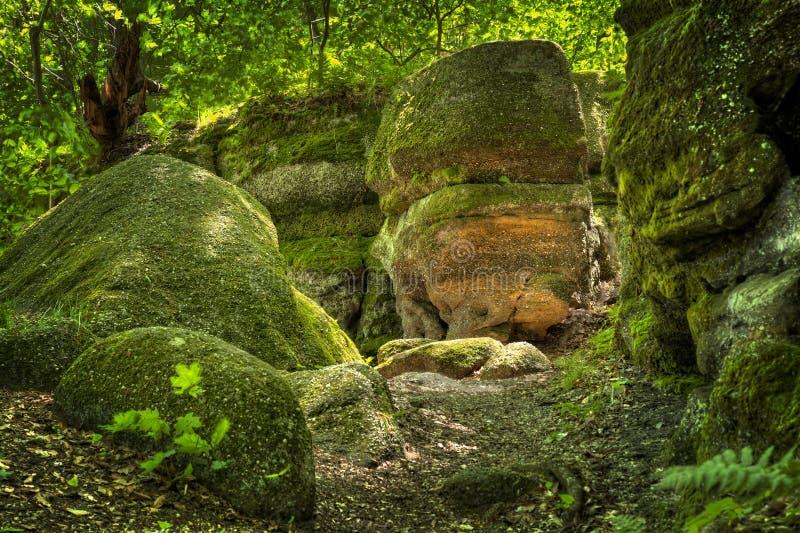 Κρατικό πάρκο Οχάιο προεξοχών του Nelson στοκ εικόνα