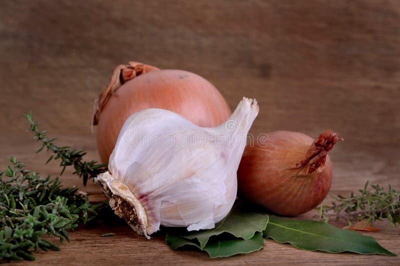 Κρεμμύδια, κρεμμύδι, σκόρδο και χορτάρια στοκ εικόνες