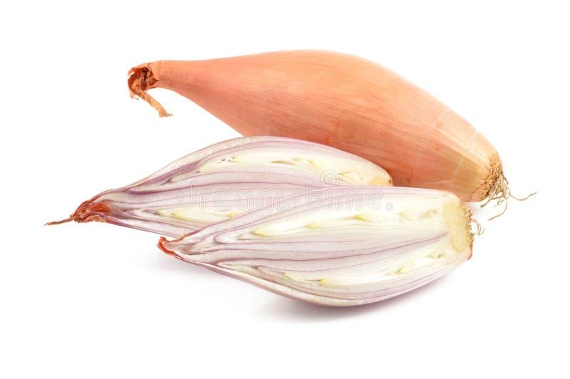 Κρεμμύδια κρεμμυδιών σε ένα άσπρο υπόβαθρο στοκ εικόνες