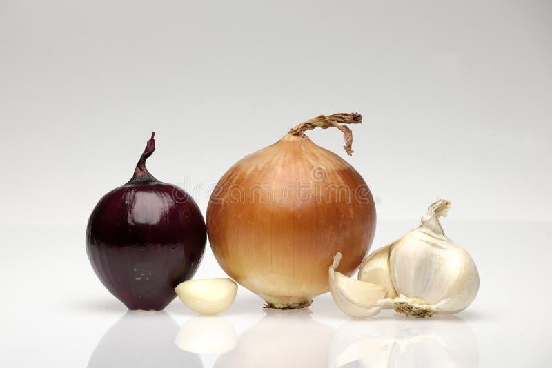 Κρεμμύδι και σκόρδο στο άσπρο υπόβαθρο στοκ εικόνες με δικαίωμα ελεύθερης χρήσης