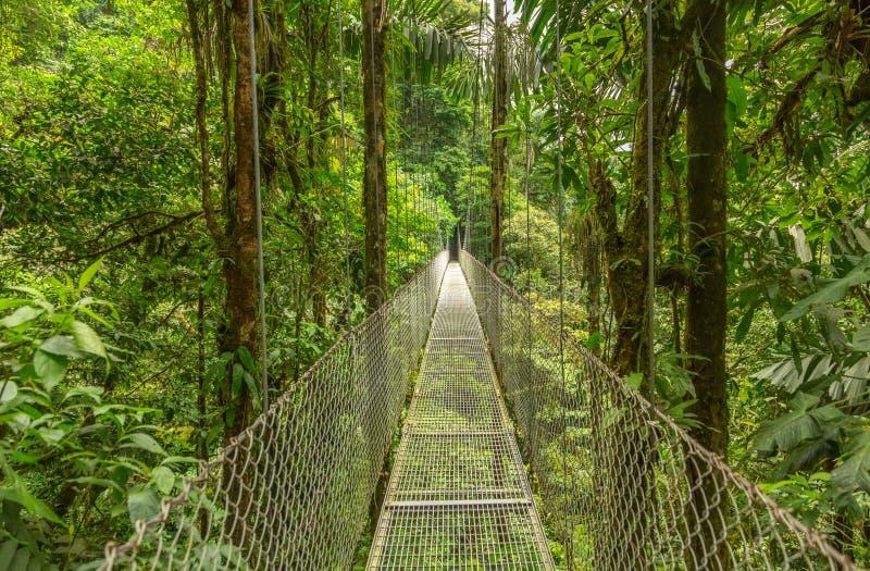 Κρεμώντας γέφυρα στη Κόστα Ρίκα στοκ εικόνες