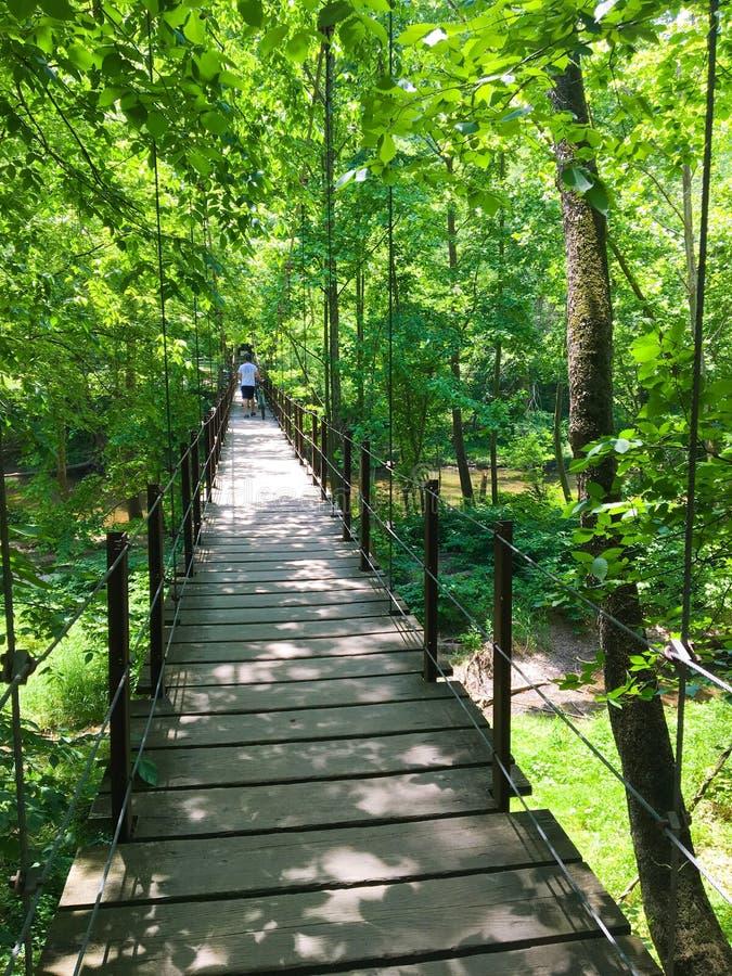 Κρεμώντας γέφυρα στο κρατικό πάρκο Patapsco στη Μέρυλαντ στοκ φωτογραφίες με δικαίωμα ελεύθερης χρήσης